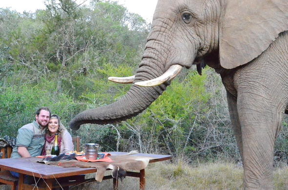 Couple having a lunch with a special guest at Addo Elephant Safari Lodge.