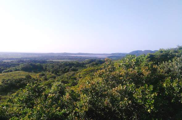 Enjoy picturesque views at Cape Vidal.