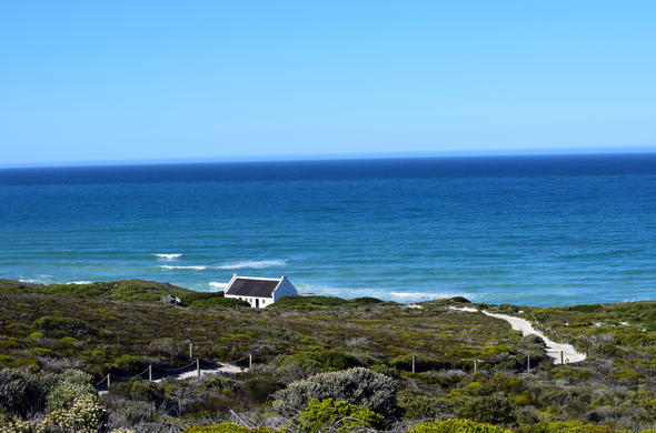 Sea and fynbos at De Hoop Nature Reserve along the Garden Route.