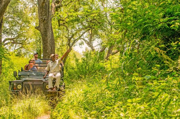 Karongwe Game Reserve | South Africa Nature Reserves