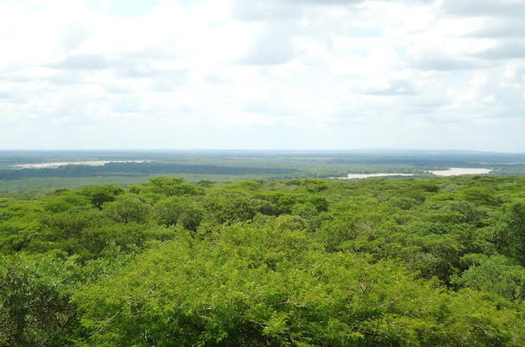 Ndumo Game Reserve in KwaZulu-Natal.
