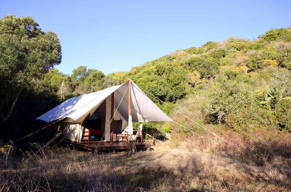 amakhala game reserve lodges tented camps country house rh nature reserve co za