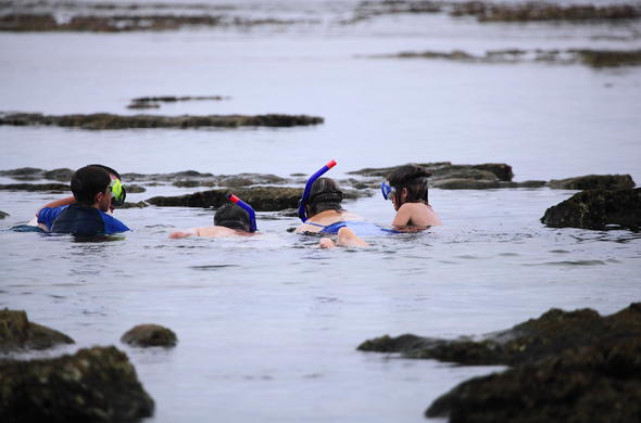 Adults and children can go on snorkelling in Sodwana Bay National Park.