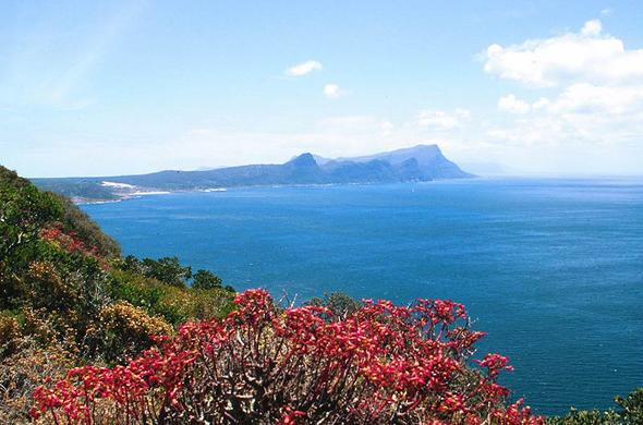 Table Mountain National Park.
