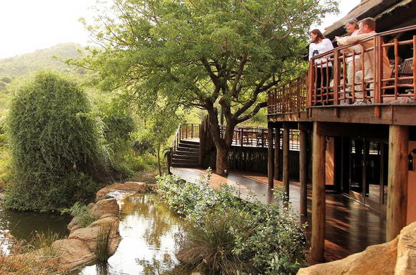 Thanda Safari Private Reserve | South Africa Nature Reserves