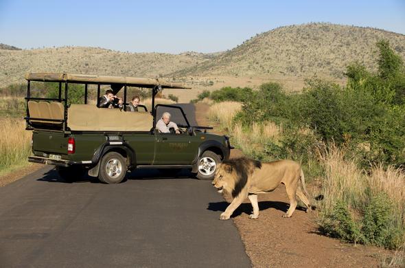 Pilanesberg Game Reserve Big Five Safaris Game Drives